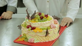 Creamy cake with fruits topping. Jellied fruits on top of the pie. stock video footage