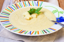 Creamy cauliflower and zucchini soup Royalty Free Stock Images