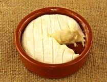 Creamy cheese Stock Photography