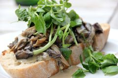 Creamy Cheese Mushroom Bruschetta with Watercress Stock Photos