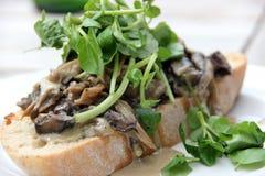 Creamy Cheese Mushroom Bruschetta with Watercress Stock Photos