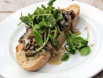 Creamy Cheese Mushroom Bruschetta with Watercress Stock Photo