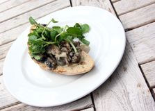 Creamy Cheese Mushroom Bruschetta with Watercress Royalty Free Stock Images