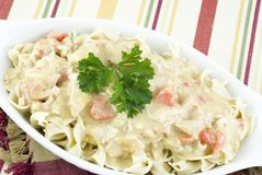 Creamy Chicken and Noodle Bake Royalty Free Stock Photo