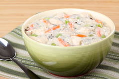 Creamy Chicken Soup Royalty Free Stock Images