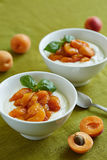 Creamy dessert with stewed apricot halves royalty free stock photos