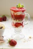 Creamy dessert with strawberry and muesli Stock Photos