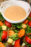 Creamy Garlic French Dressing Stock Image