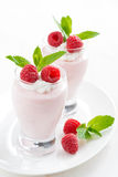 Creamy jelly with raspberries Royalty Free Stock Image