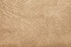 Creamy leather Royalty Free Stock Photos