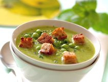 Creamy mint pea soup with croutons. Creamy mint green pea soup is in white bowl. Topped with some green peas, chopped herbs and crunchy brown croutons royalty free stock photo