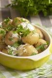 Creamy minted potatoes Royalty Free Stock Photo