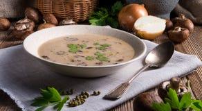 Creamy Mushroom Soup Royalty Free Stock Image