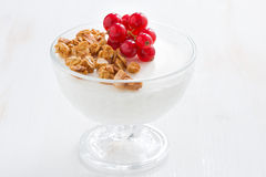 Creamy panna cotta with fresh berries and granola, horizontal Royalty Free Stock Photography
