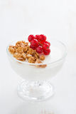 Creamy panna cotta with fresh berries and granola, vertical Stock Images