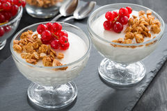 Creamy panna cotta with granola and fresh red currants Royalty Free Stock Images