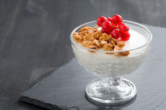 Creamy panna cotta with granola and red currants on dark Stock Image