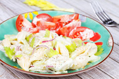 Creamy Pasta Salad with Celery and Red Onion. Stock Photos