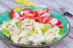 Creamy Pasta Salad Stock Photography