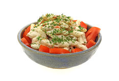 Creamy Pasta Salad Front View Royalty Free Stock Photo