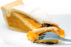 Creamy pie slice Stock Image