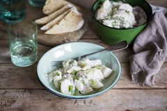 Creamy potato salad. A bowl of simple rustic Creamy potato salad with green onions stock photography
