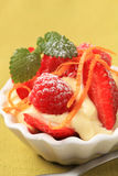 Creamy pudding with fresh fruit Stock Photography