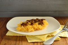 Creamy pumpkin risotto with caramelized pumpkin seeds Royalty Free Stock Photography