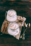 Creamy rice pudding with cinnamon Stock Images