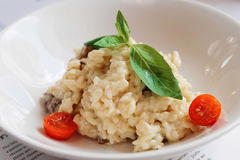 Creamy risotto in porcelain plate, toned Stock Image