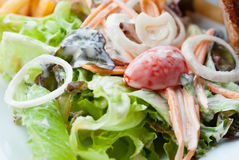 Creamy salad Royalty Free Stock Images