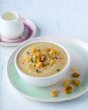 Creamy soup. Portion of delicious creamy vegetable soup Stock Photography