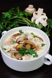 Creamy soup pureed mushrooms and chicken. Creamy soup pureed mushrooms and slices of chicken Stock Photo