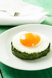 Creamy spinach with fried egg Stock Photos