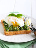 Creamy spinach and poached egg toast Stock Image