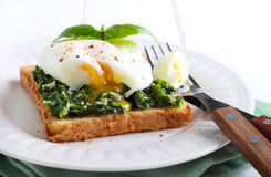 Creamy spinach and poached egg toast Stock Photography