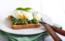 Creamy spinach and poached egg toast Stock Images