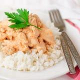 Creamy Tomato Chicken on Rice Royalty Free Stock Image
