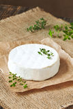Creamy traditional camembert cheese french dairy Stock Photography