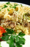 Creamy Tuna And Pasta Bake Stock Photography
