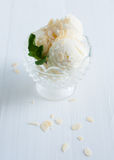 Creamy vanilla ice cream Stock Photos
