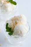 Creamy vanilla ice cream Stock Photography