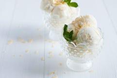 Creamy vanilla ice cream Stock Images