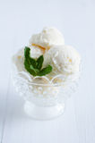 Creamy vanilla ice cream Royalty Free Stock Photos