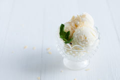Creamy vanilla ice cream Royalty Free Stock Photography