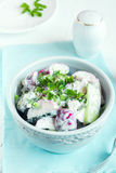 Creamy vegetable salad Royalty Free Stock Images