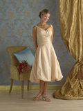 Creamy Yellow Evening dress Stock Photos