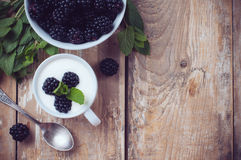 Creamy yogurt with blackberries Royalty Free Stock Photo