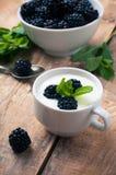 Creamy yogurt with blackberries Stock Photography