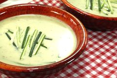 Creamy zucchini soup. Fresh zucchini cream soup in bowls on a checkered napkin stock photo